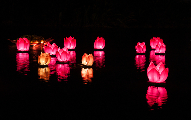 Things_to_Know_About_Hoi_An,_A_Colorful_Water_Festival_Lantern